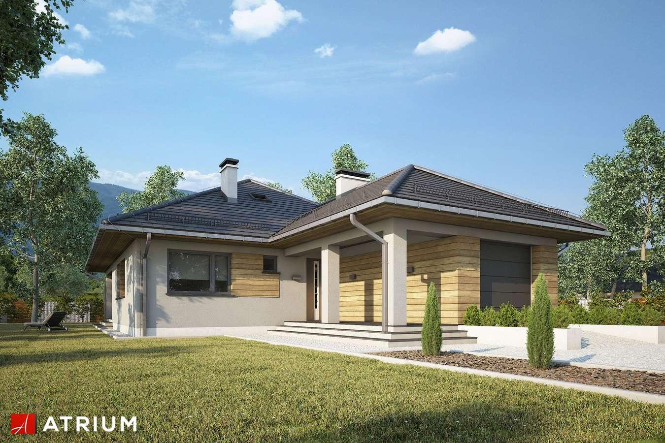 Projekty domów - Projekt domu parterowego TIP TOP IV - wizualizacja 2 - wersja lustrzana