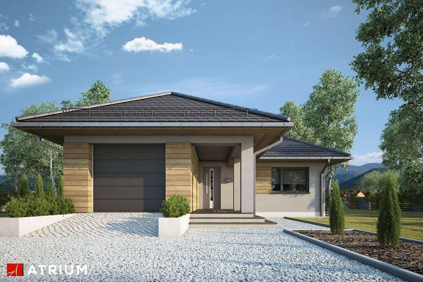 Projekty domów - Projekt domu parterowego TIP TOP IV - wizualizacja 1