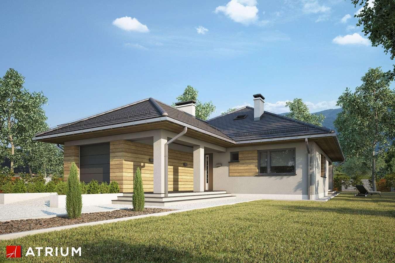 Projekty domów - Projekt domu parterowego TIP TOP IV - wizualizacja 2