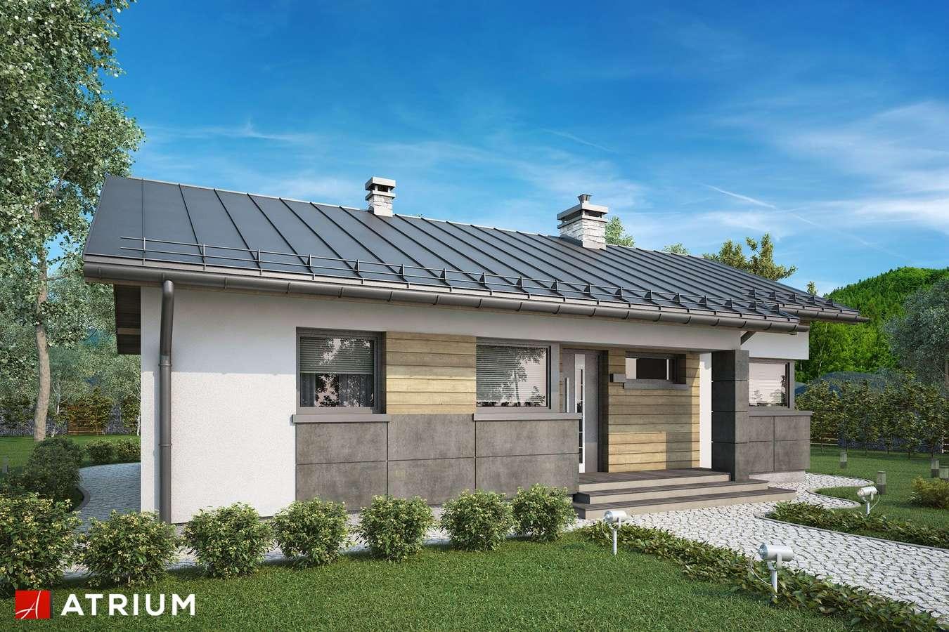 Projekty domów - Projekt domu parterowego ROBERTO IV - wizualizacja 1