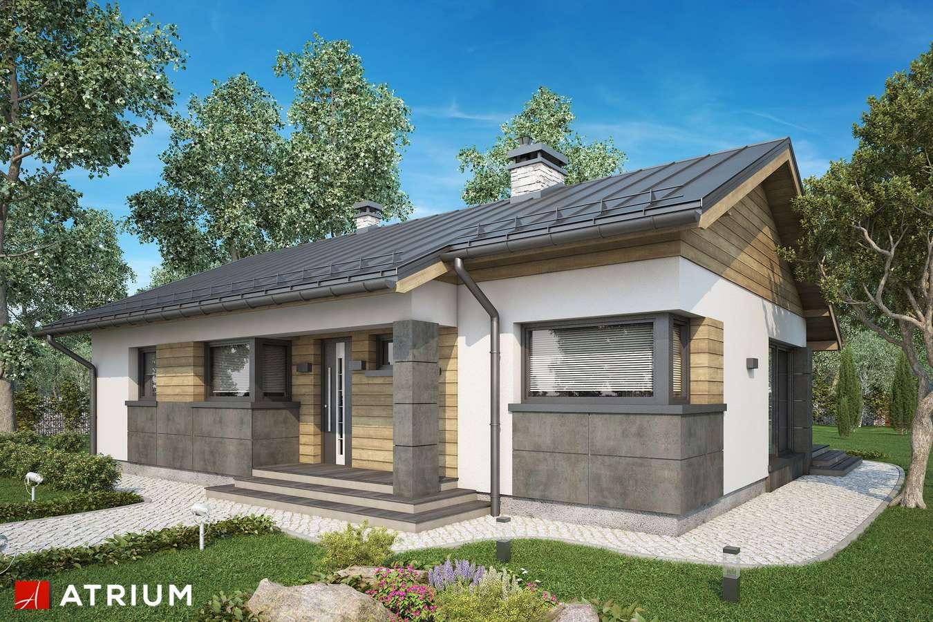 Projekty domów - Projekt domu parterowego ROBERTO IV - wizualizacja 2