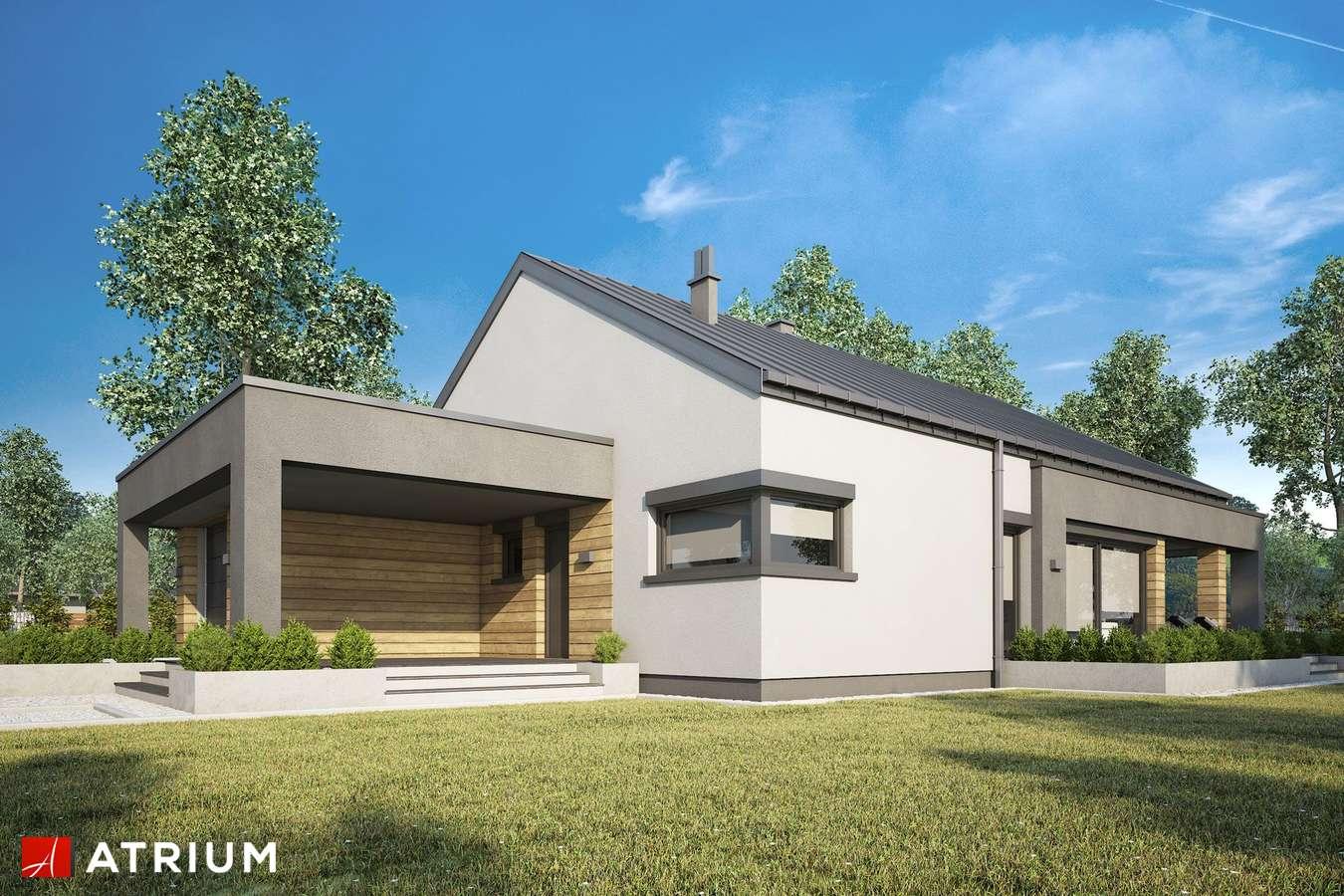 Projekty domów - Projekt domu parterowego SARDYNIA XIV - wizualizacja 1 - wersja lustrzana
