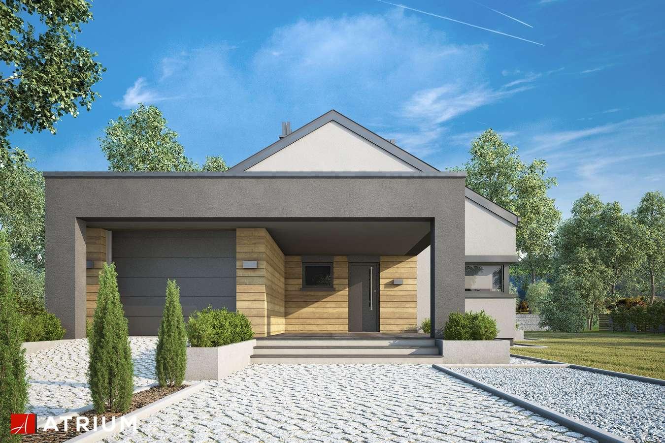 Projekty domów - Projekt domu parterowego SARDYNIA XIV - wizualizacja 2 - wersja lustrzana
