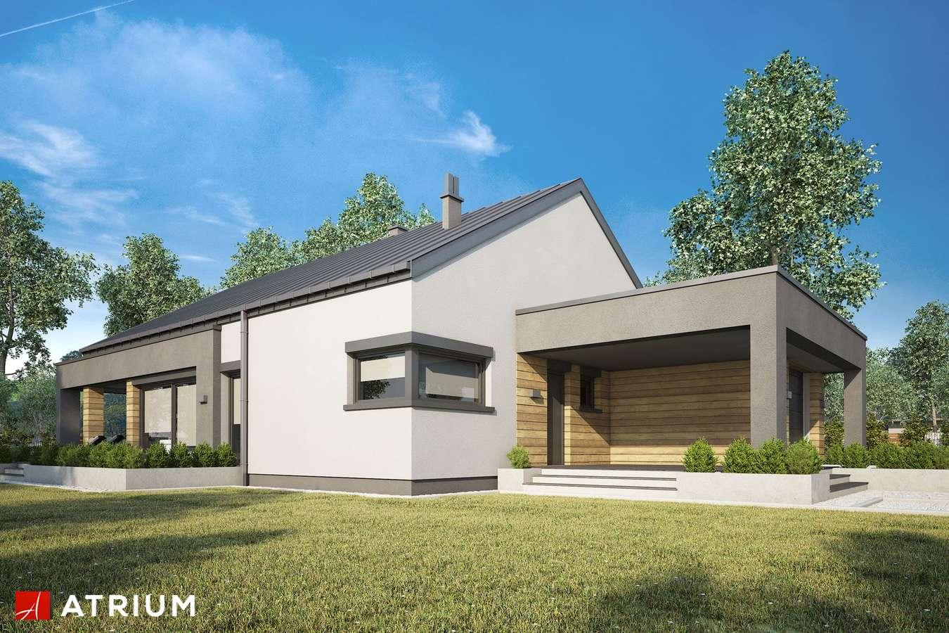 Projekty domów - Projekt domu parterowego SARDYNIA XIV - wizualizacja 1