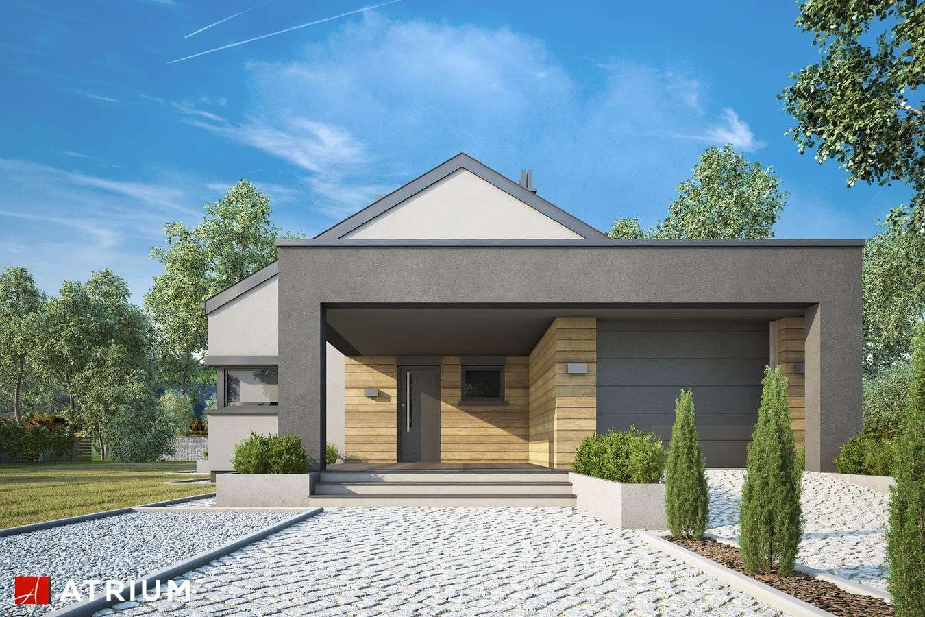 Projekty domów - Projekt domu parterowego SARDYNIA XIV - wizualizacja 2