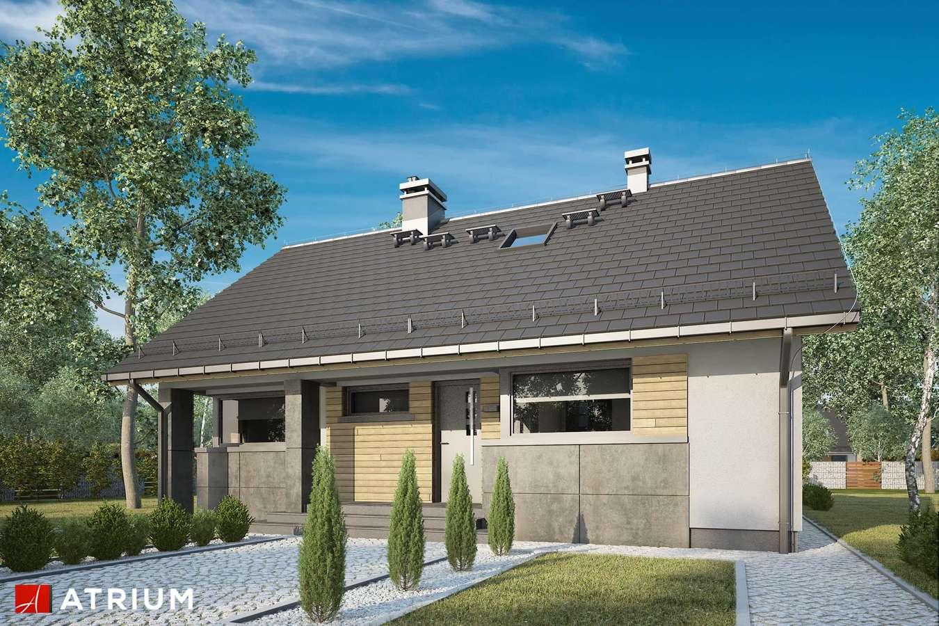 Projekty domów - Projekt domu z poddaszem RICARDO LIFT IV - wizualizacja 1 - wersja lustrzana