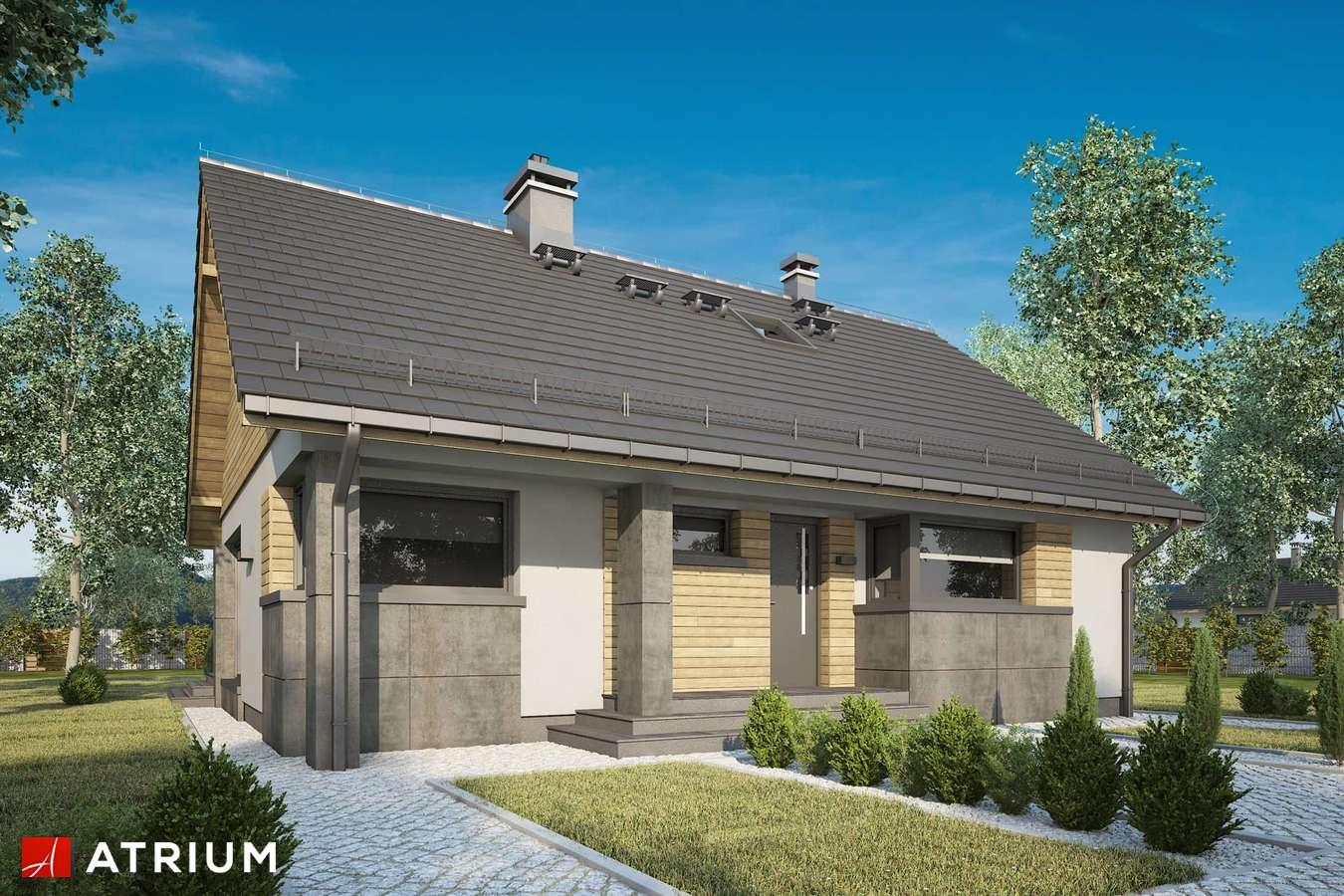 Projekty domów - Projekt domu z poddaszem RICARDO LIFT IV - wizualizacja 2 - wersja lustrzana