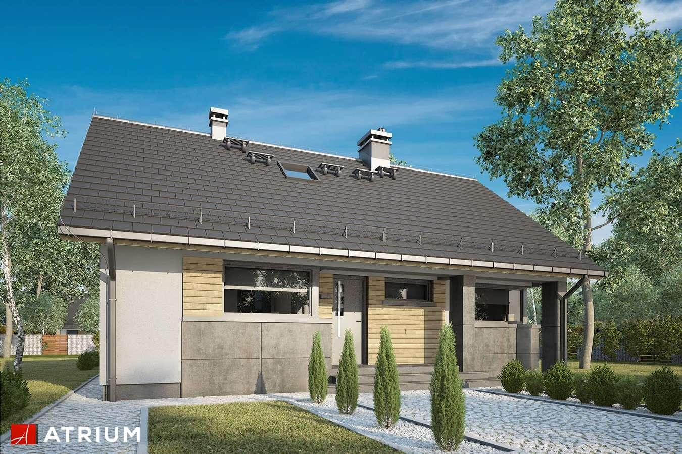 Projekty domów - Projekt domu z poddaszem RICARDO LIFT IV - wizualizacja 1
