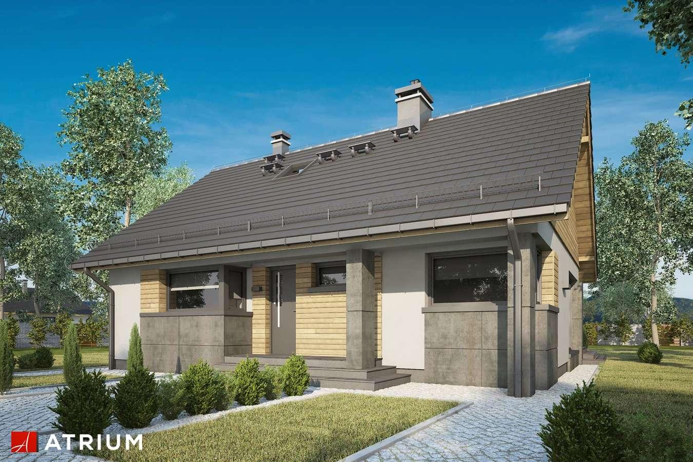 Projekty domów - Projekt domu z poddaszem RICARDO LIFT IV - wizualizacja 2