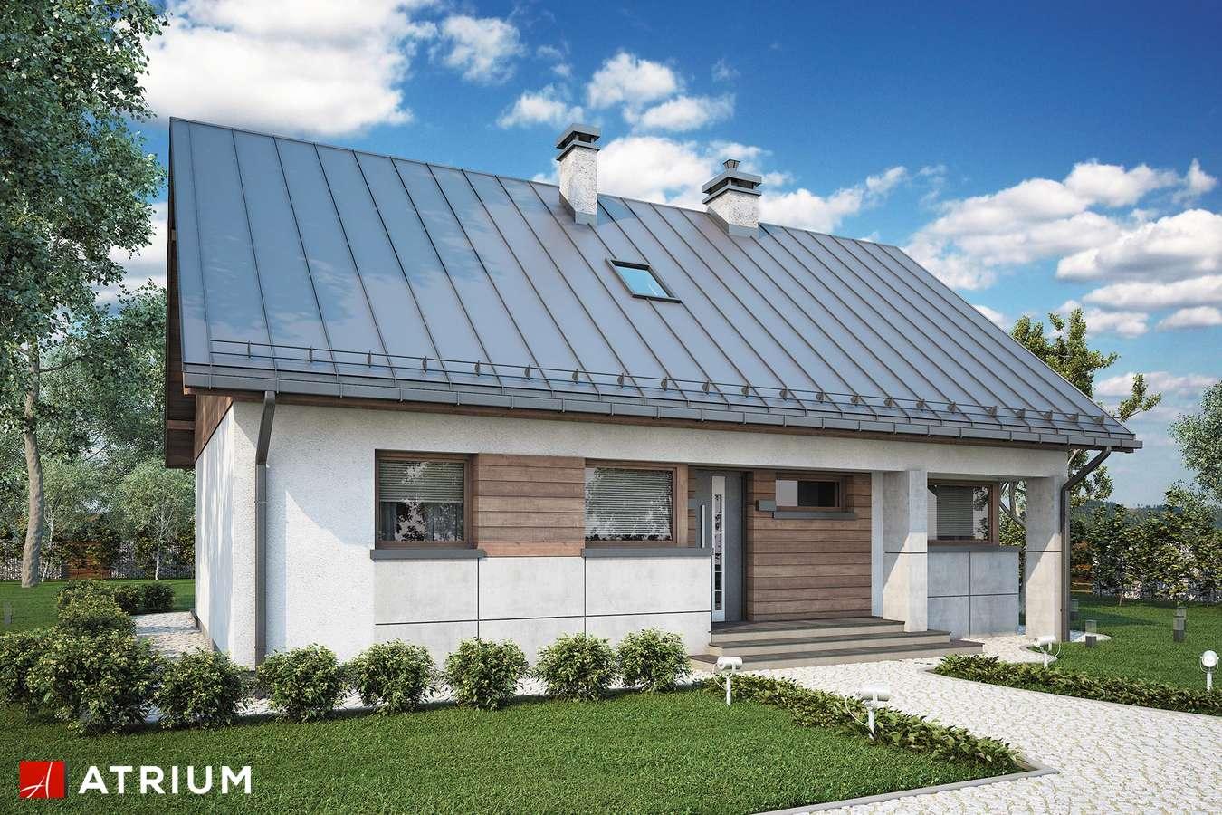 Projekty domów - Projekt domu z poddaszem ROBERTO LIFT - wizualizacja 1