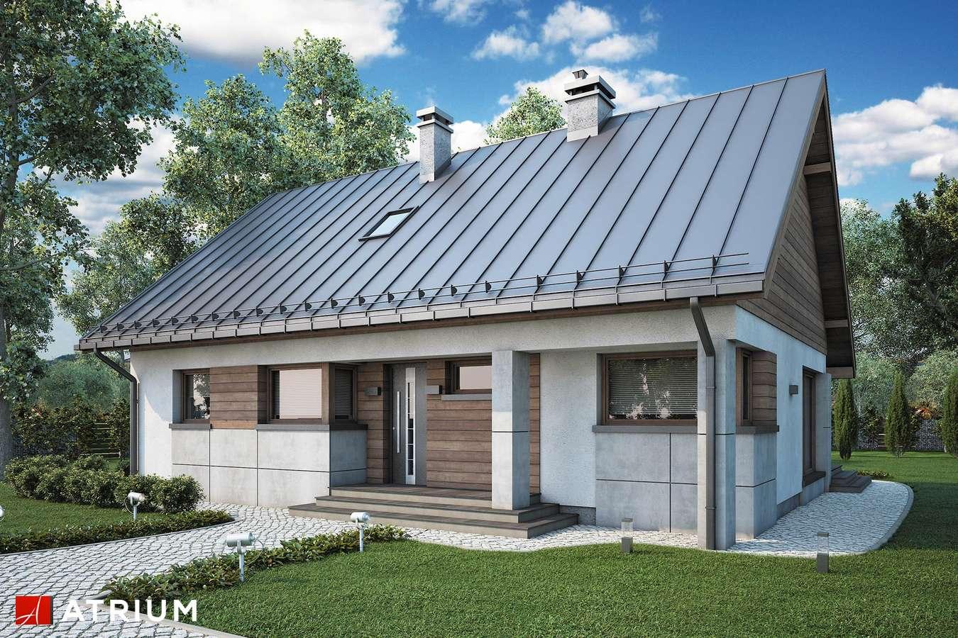 Projekty domów - Projekt domu z poddaszem ROBERTO LIFT - wizualizacja 2