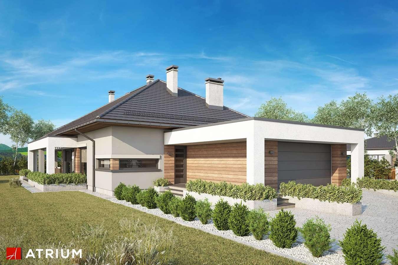 Projekty domów - Projekt domu parterowego SARDYNIA XV - wizualizacja 1