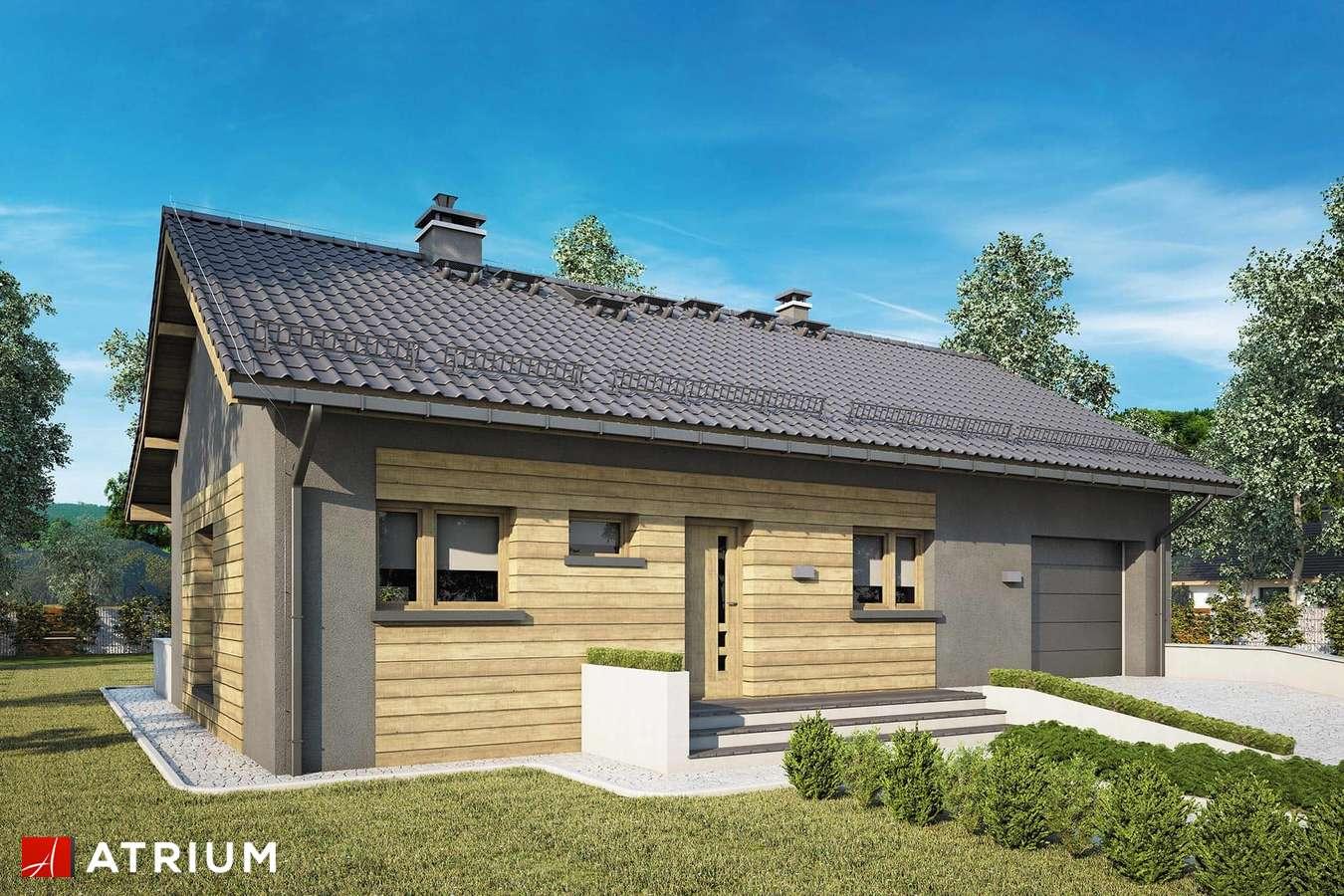 Projekty domów - Projekt domu parterowego RONALDO IX - wizualizacja 1 - wersja lustrzana