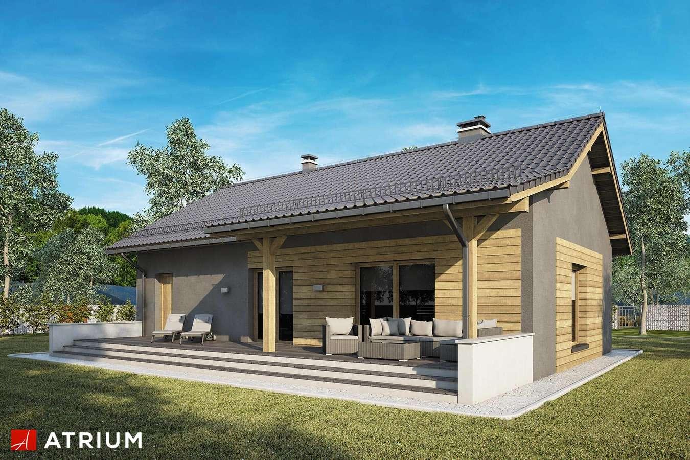 Projekty domów - Projekt domu parterowego RONALDO IX - wizualizacja 2 - wersja lustrzana