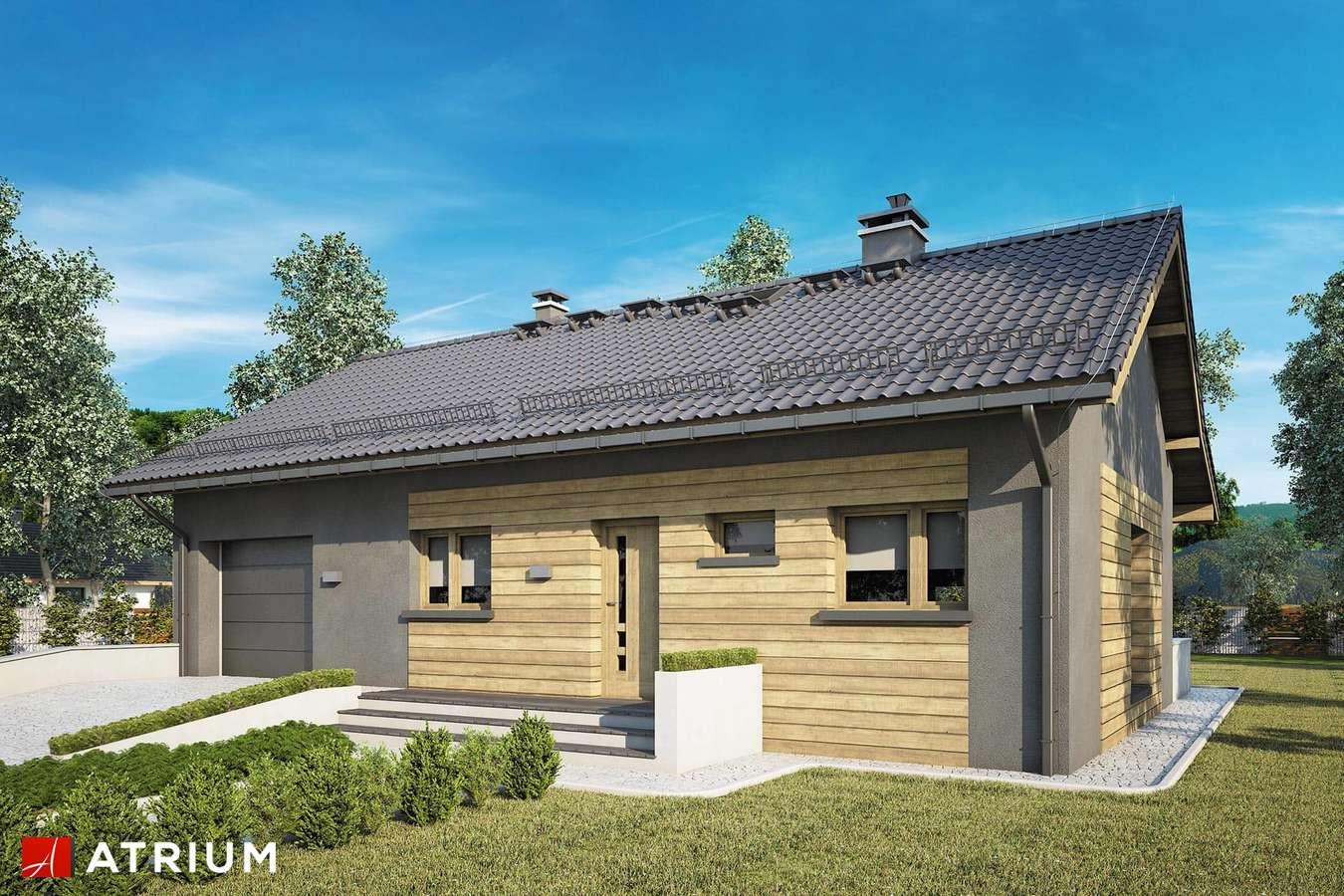 Projekty domów - Projekt domu parterowego RONALDO IX - wizualizacja 1