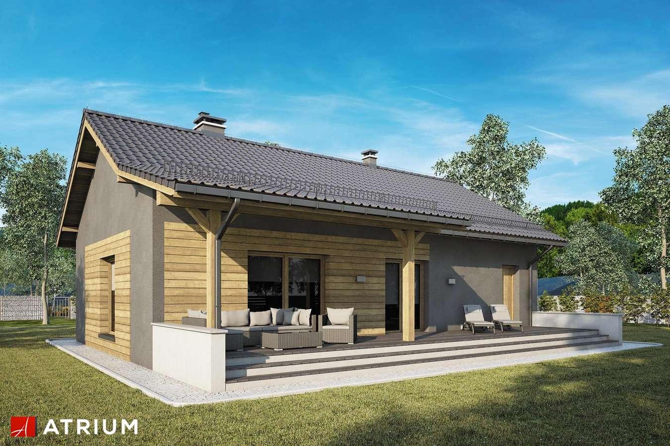 Projekty domów - Projekt domu parterowego RONALDO IX - wizualizacja 2