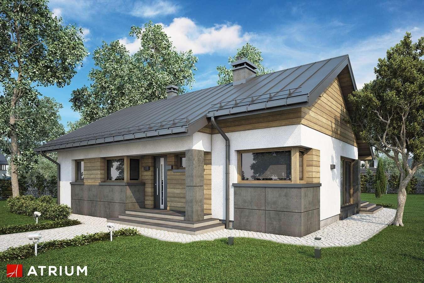 Projekty domów - Projekt domu parterowego ROBERTO V - wizualizacja 1