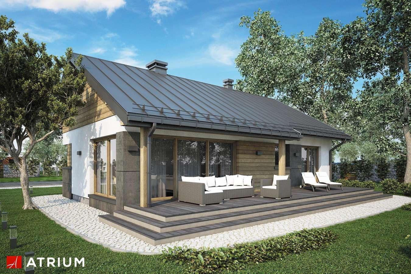 Projekty domów - Projekt domu parterowego ROBERTO V - wizualizacja 2