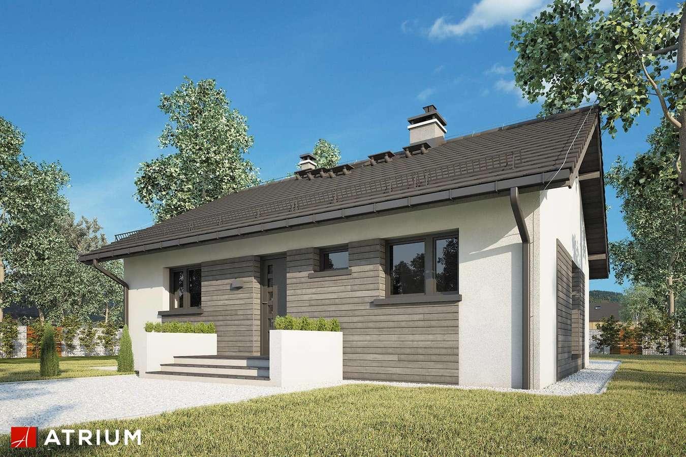 Projekty domów - Projekt domu parterowego RONALDO X - wizualizacja 1