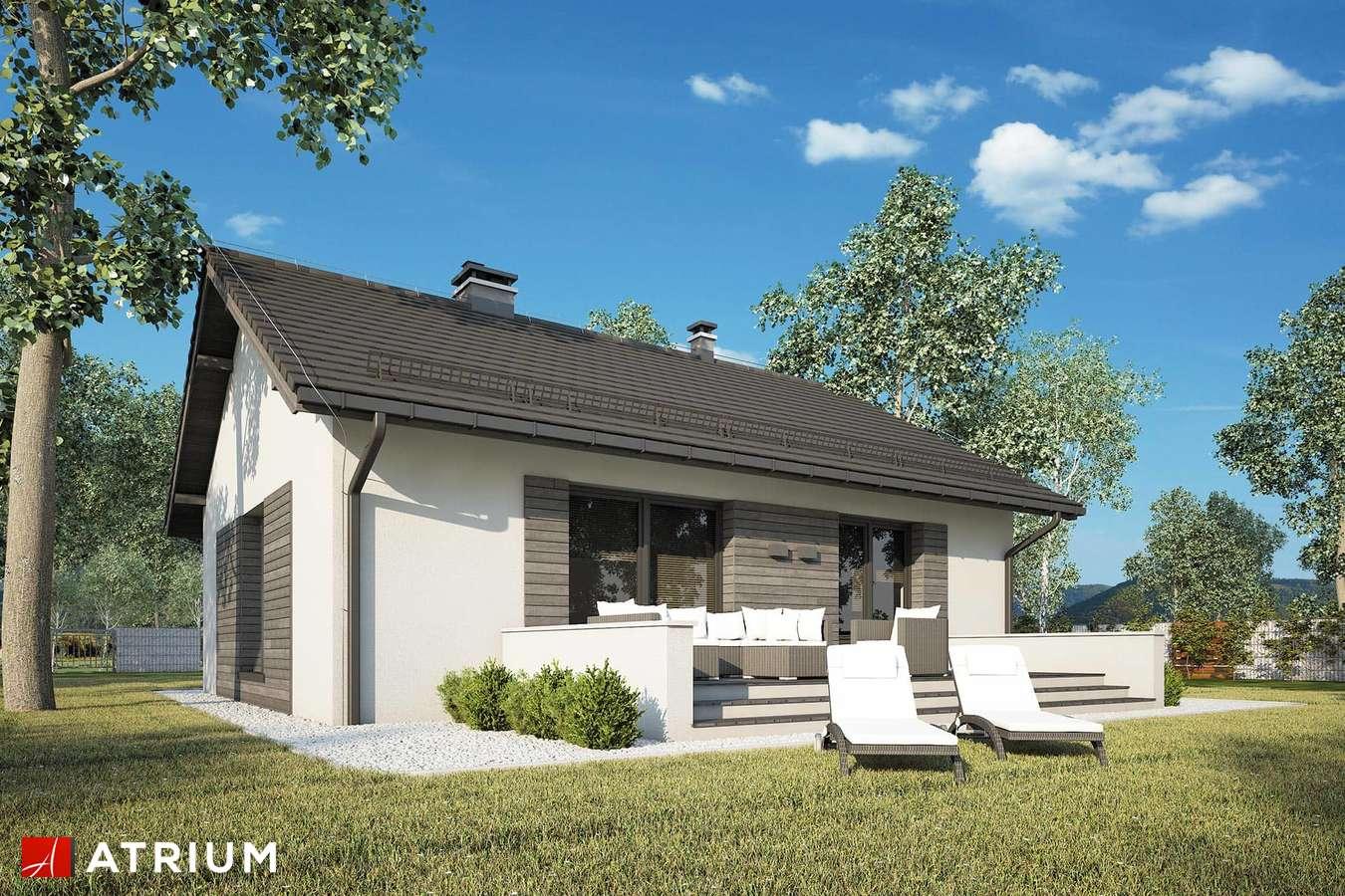 Projekty domów - Projekt domu parterowego RONALDO X - wizualizacja 2