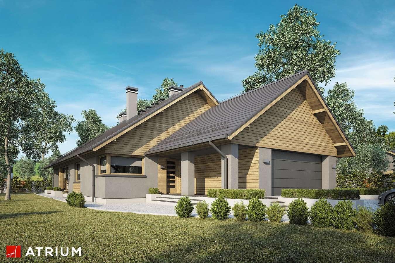 Projekty domów - Projekt domu parterowego PELIKAN XVIII BIS - wizualizacja 1