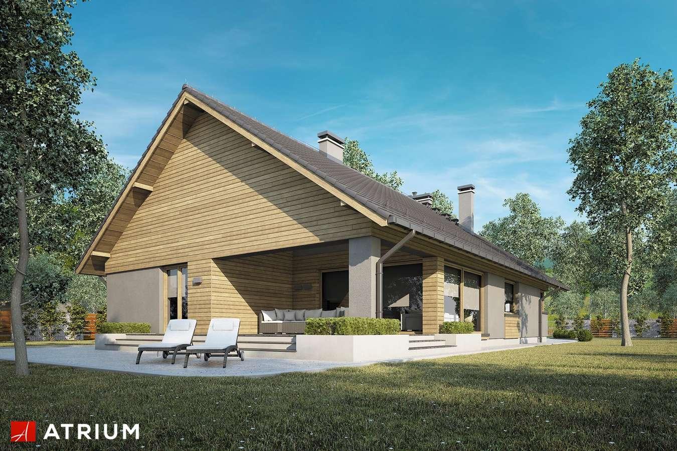 Projekty domów - Projekt domu parterowego PELIKAN XVIII BIS - wizualizacja 2