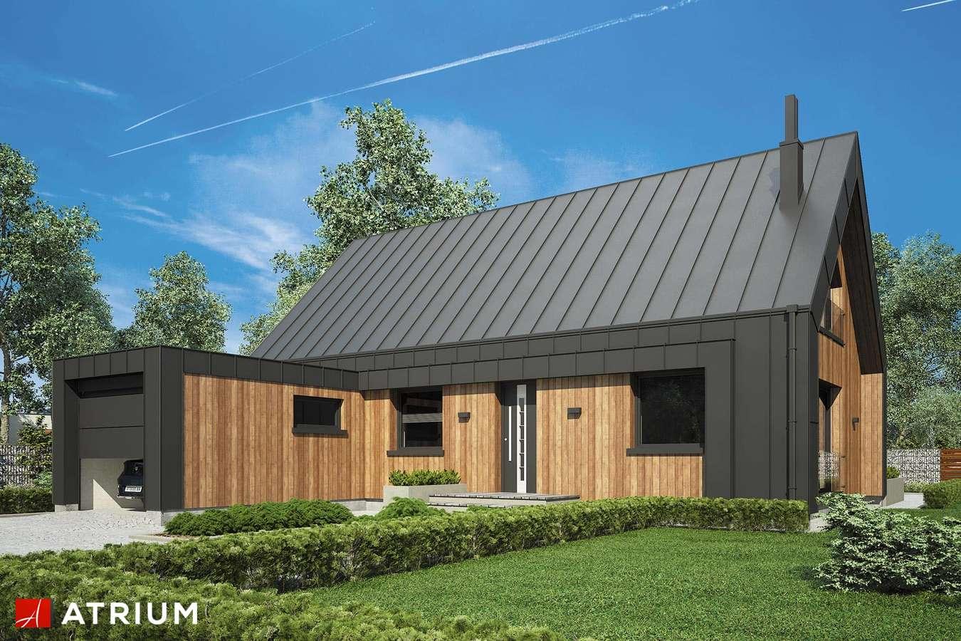 Projekty domów - Projekt domu z poddaszem AURORA MIDI IV - wizualizacja 1