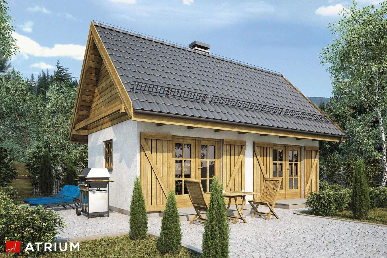 Projekty domów - Projekt domu parterowego PUNTO II - wizualizacja 1
