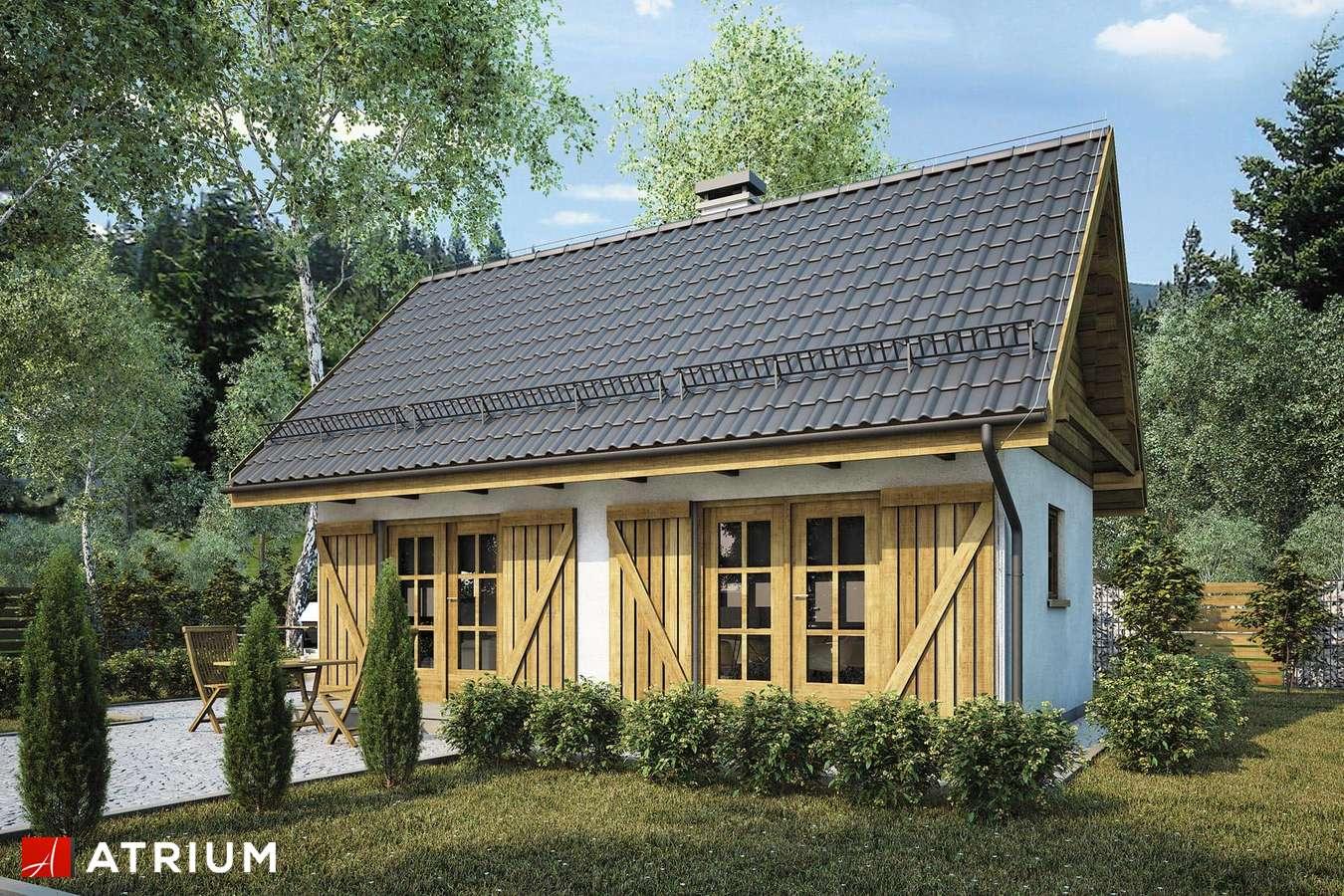 Projekty domów - Projekt domu parterowego PUNTO II - wizualizacja 2