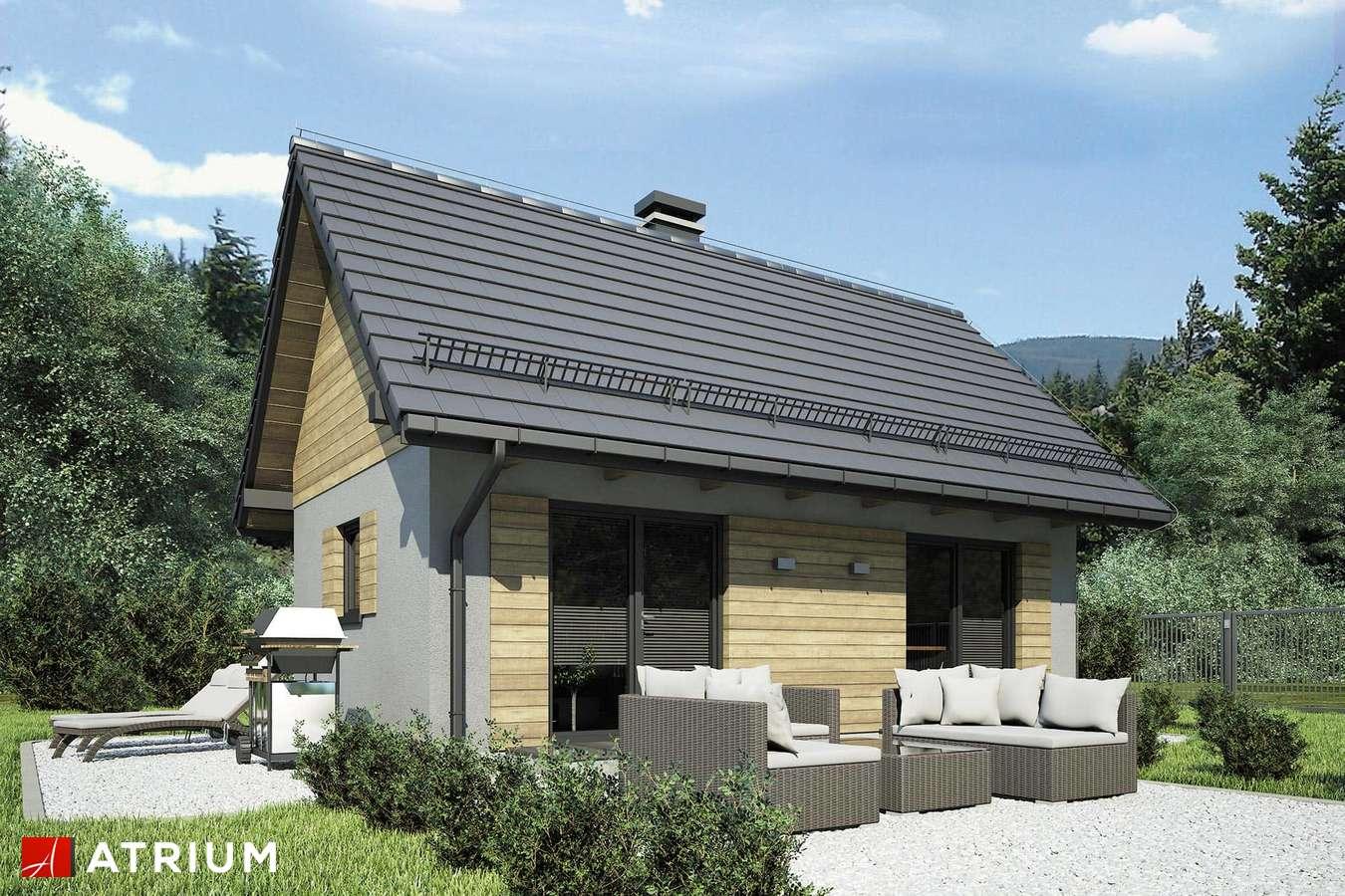 Projekty domów - Projekt domu parterowego PUNTO III - wizualizacja 1