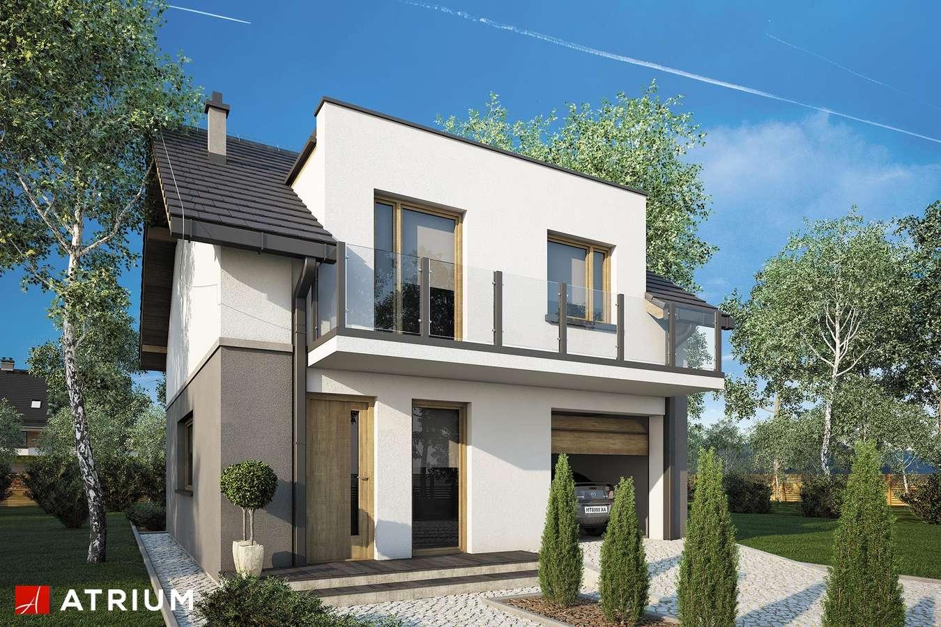 Projekty domów - Projekt domu z poddaszem SINGLE HOUSE - wizualizacja 1