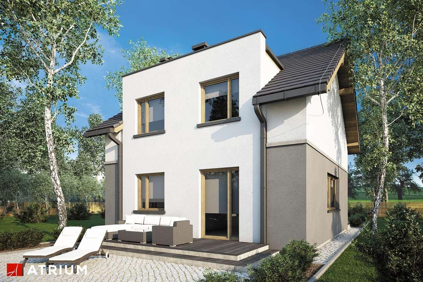 Projekty domów - Projekt domu z poddaszem SINGLE HOUSE - wizualizacja 2