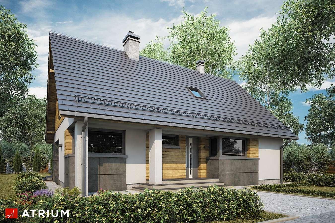 Projekty domów - Projekt domu z poddaszem RICARDO LIFT V - wizualizacja 1 - wersja lustrzana