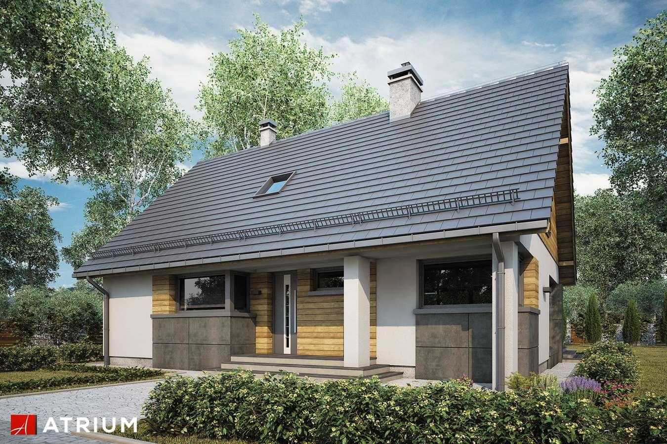 Projekty domów - Projekt domu z poddaszem RICARDO LIFT V - wizualizacja 1