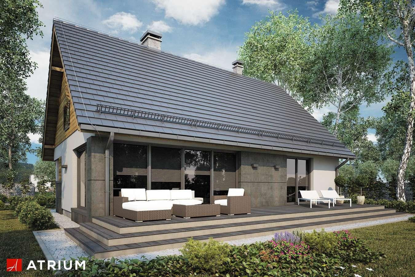 Projekty domów - Projekt domu z poddaszem RICARDO LIFT V - wizualizacja 2