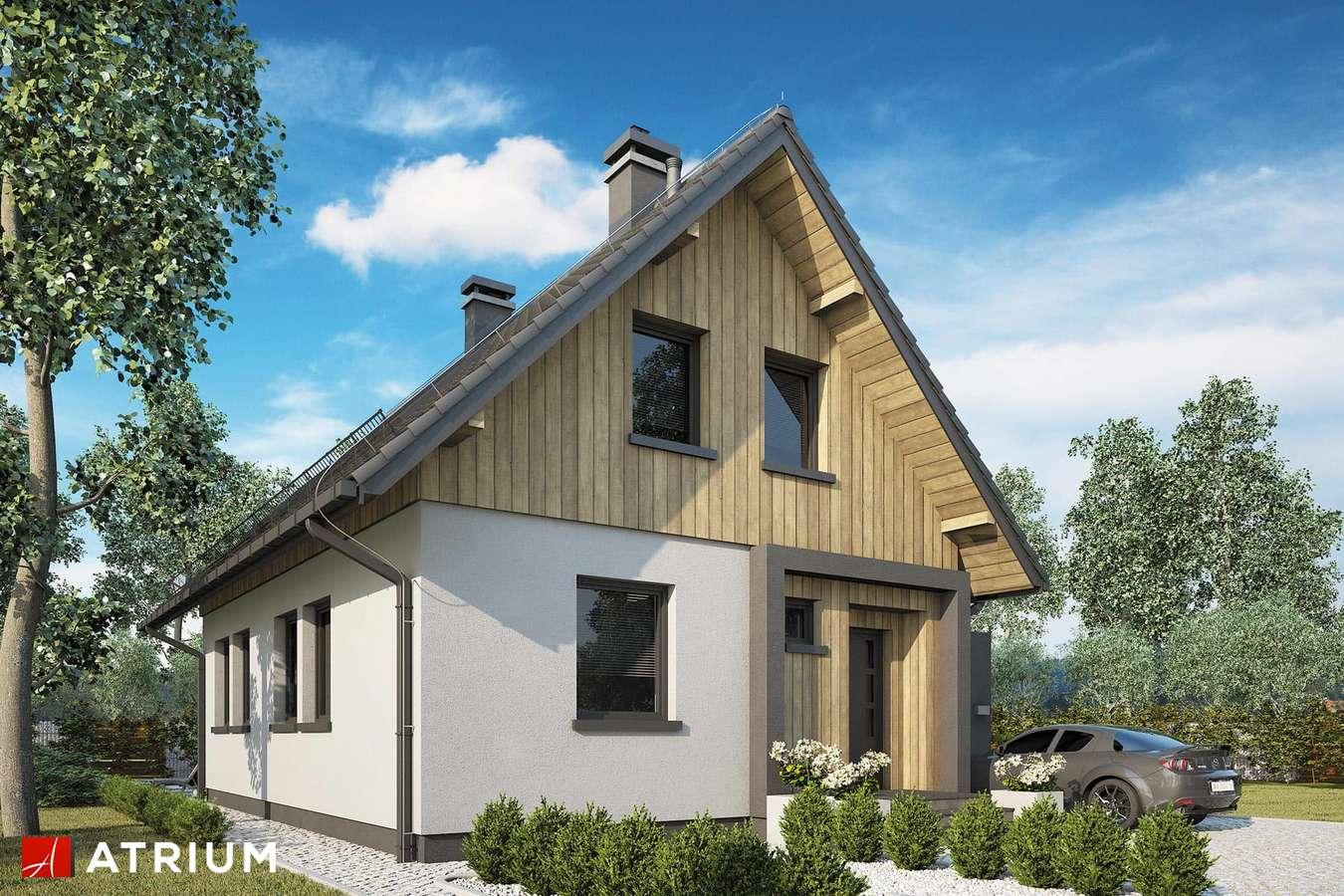 Projekty domów - Projekt domu z poddaszem FILIP - wizualizacja 1