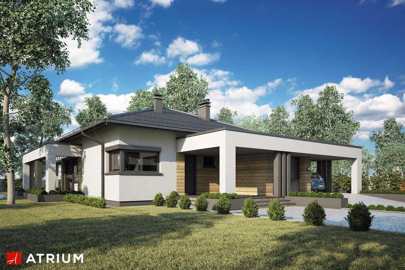 Projekty domów - Projekt domu parterowego SARDYNIA XVI - wizualizacja 1