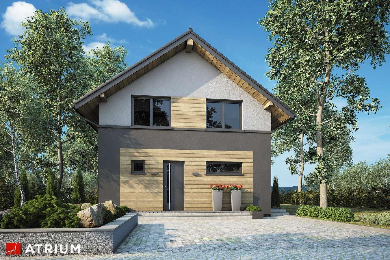 Projekty domów - Projekt domu z poddaszem SILESIA II - wizualizacja 1
