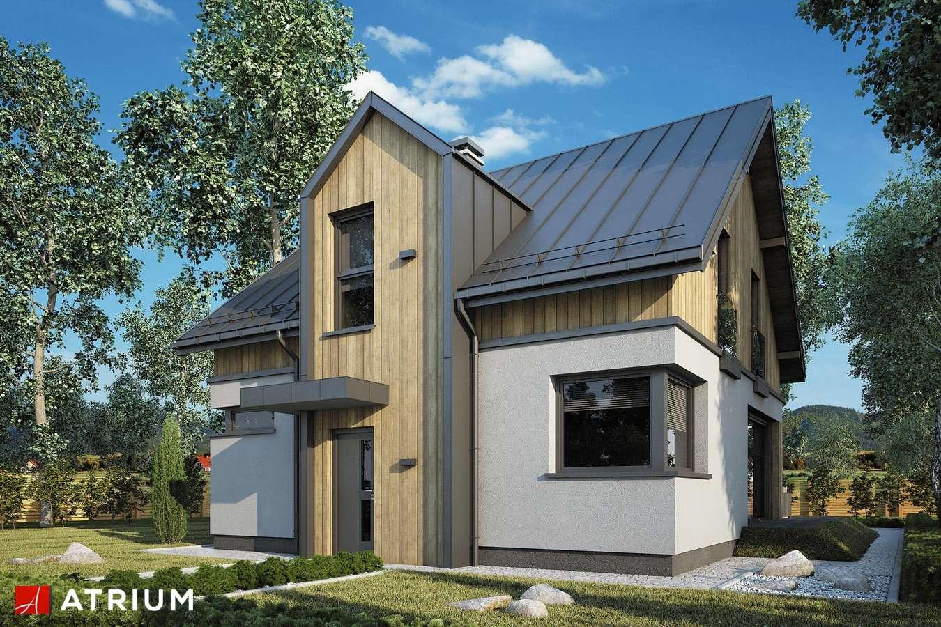Projekty domów - Projekt domu z poddaszem POLO NEW - wizualizacja 1