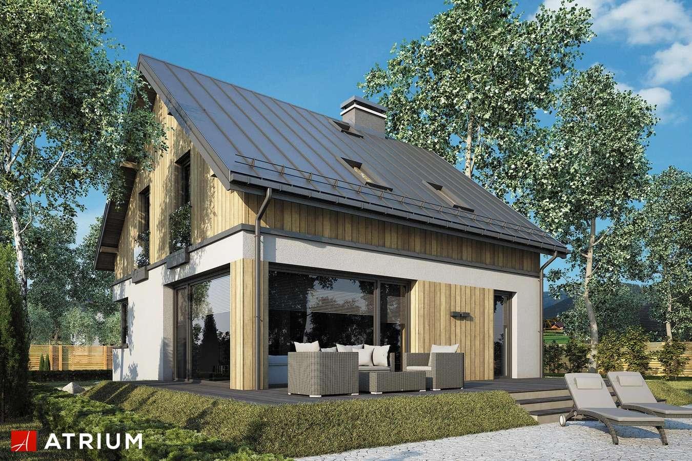 Projekty domów - Projekt domu z poddaszem POLO NEW - wizualizacja 2