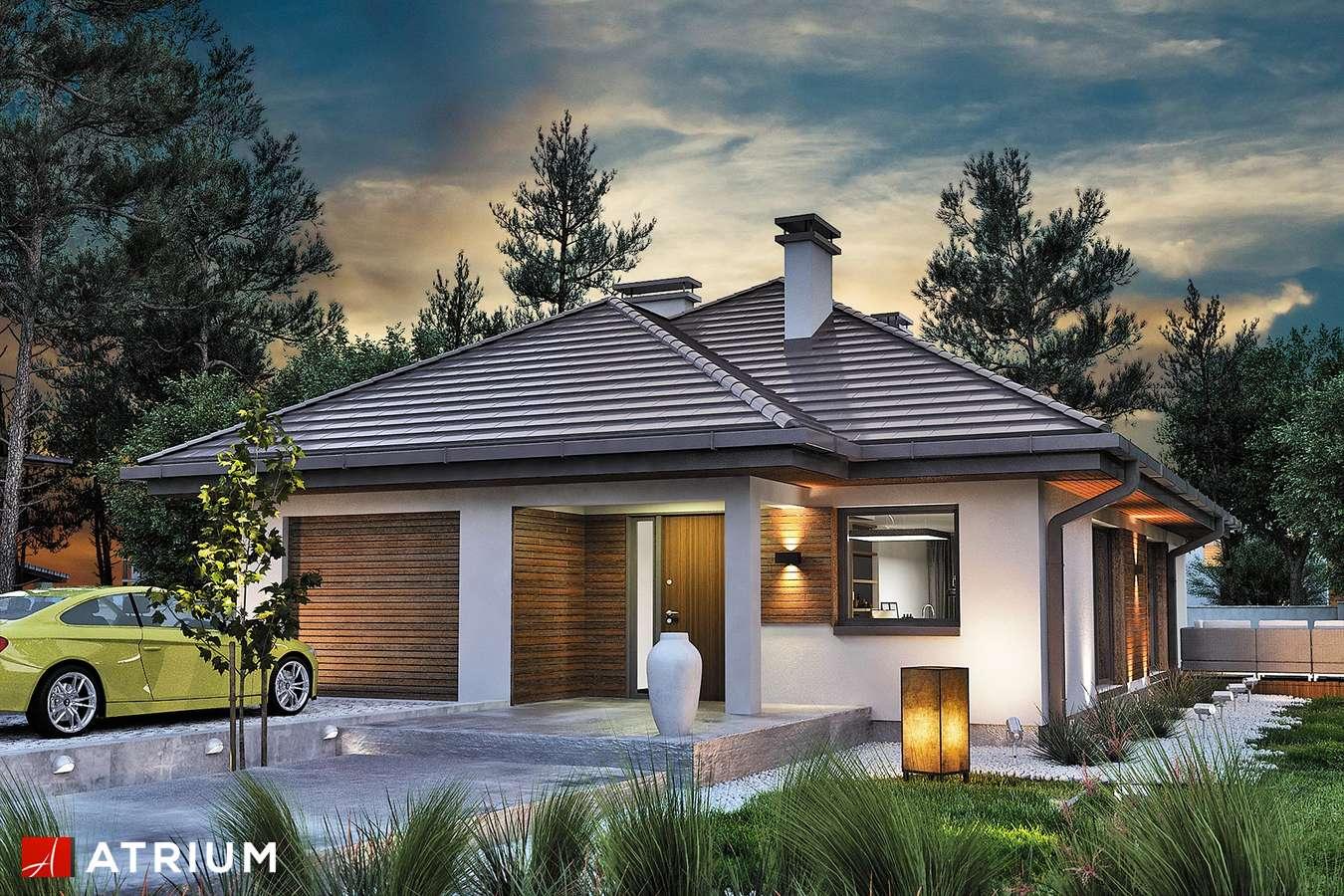 Projekty domów - Projekt domu parterowego SFINKS VI SZ - wizualizacja 1