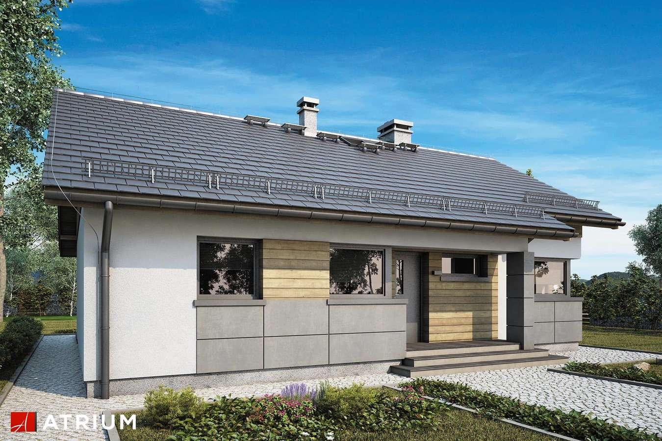 Projekty domów - Projekt domu parterowego ROBERTO VI - wizualizacja 1
