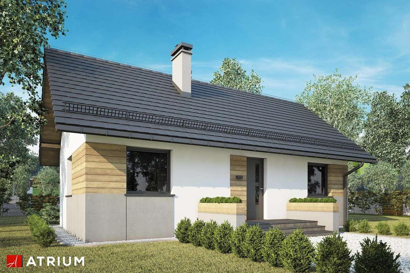 Projekty domów - Projekt domu parterowego TANGO IV - wizualizacja 1