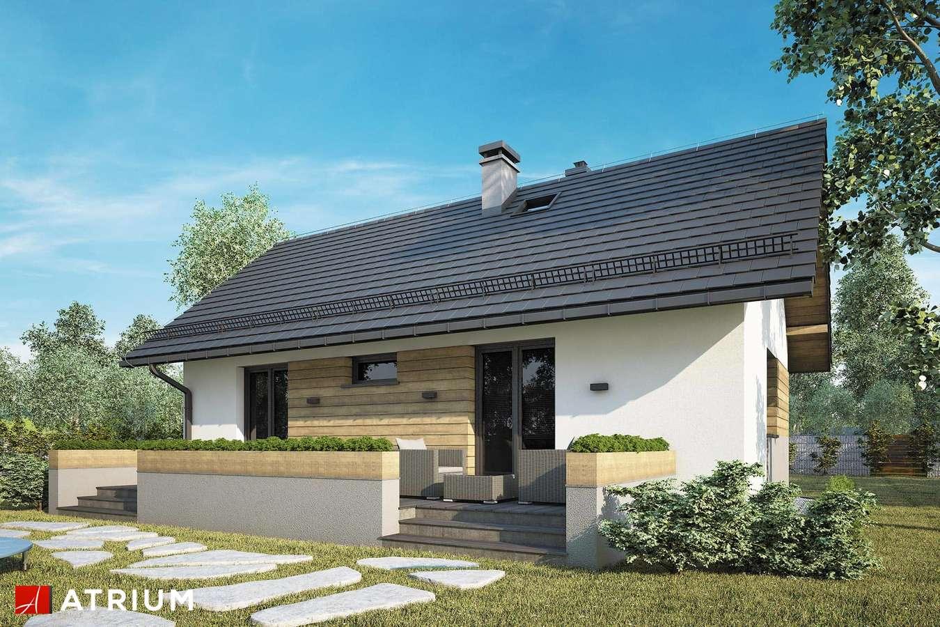 Projekty domów - Projekt domu parterowego TANGO IV - wizualizacja 2