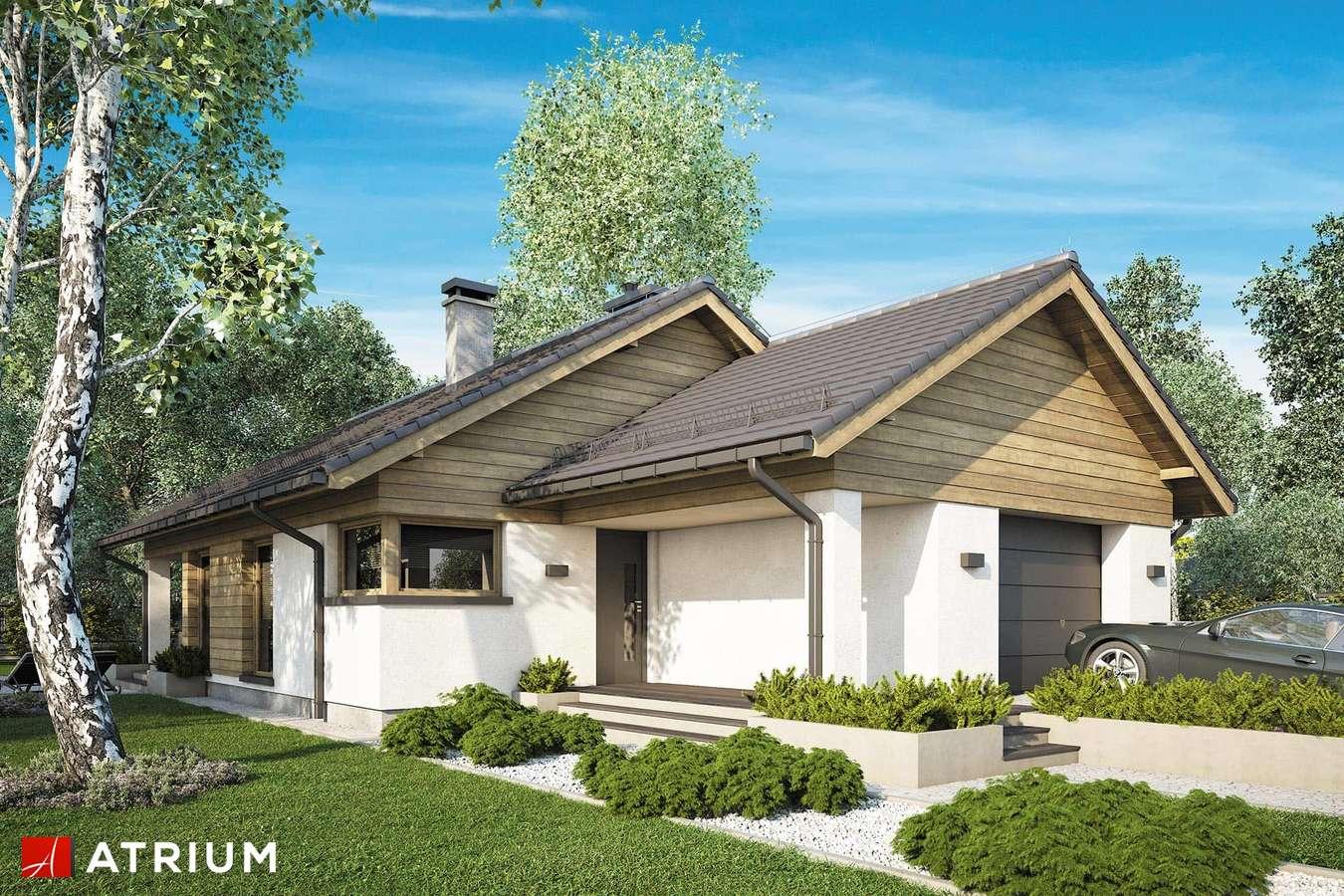 Projekty domów - Projekt domu parterowego PELIKAN SLIM IX - wizualizacja 1