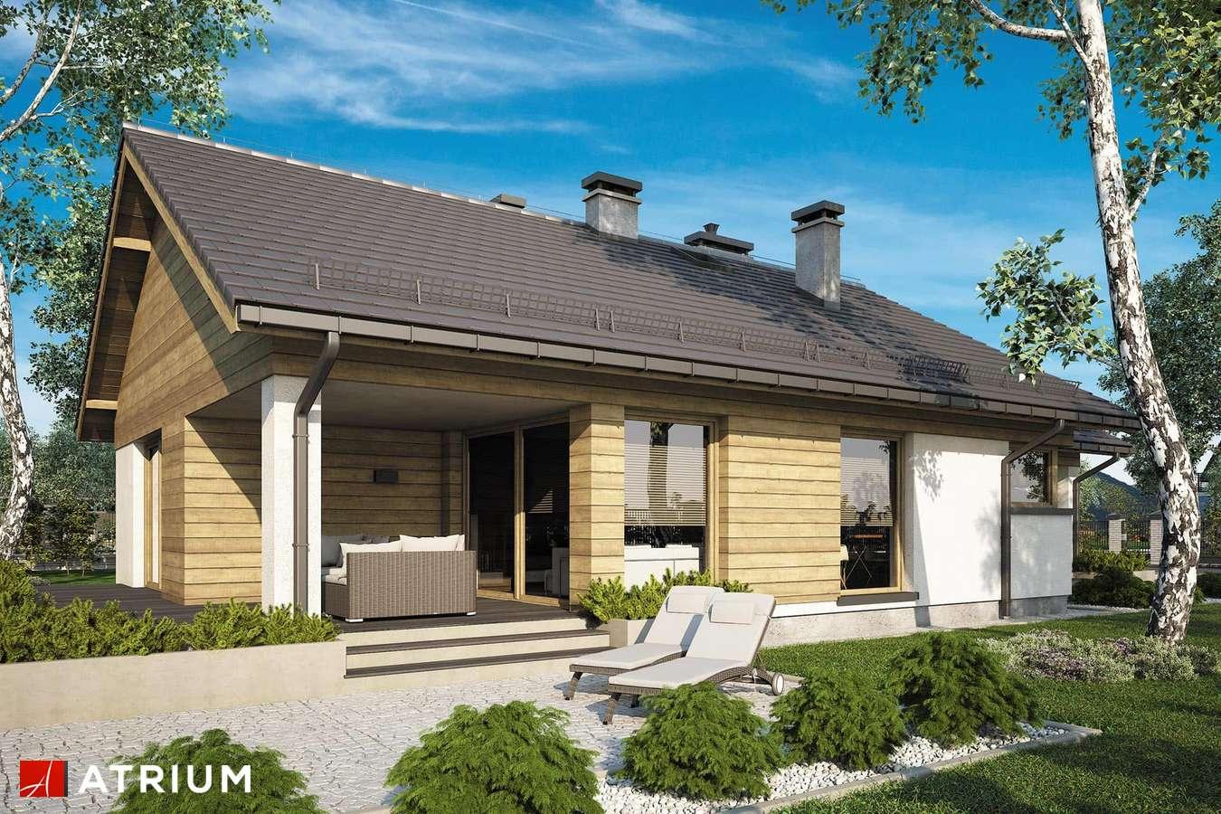 Projekty domów - Projekt domu parterowego PELIKAN SLIM IX - wizualizacja 2