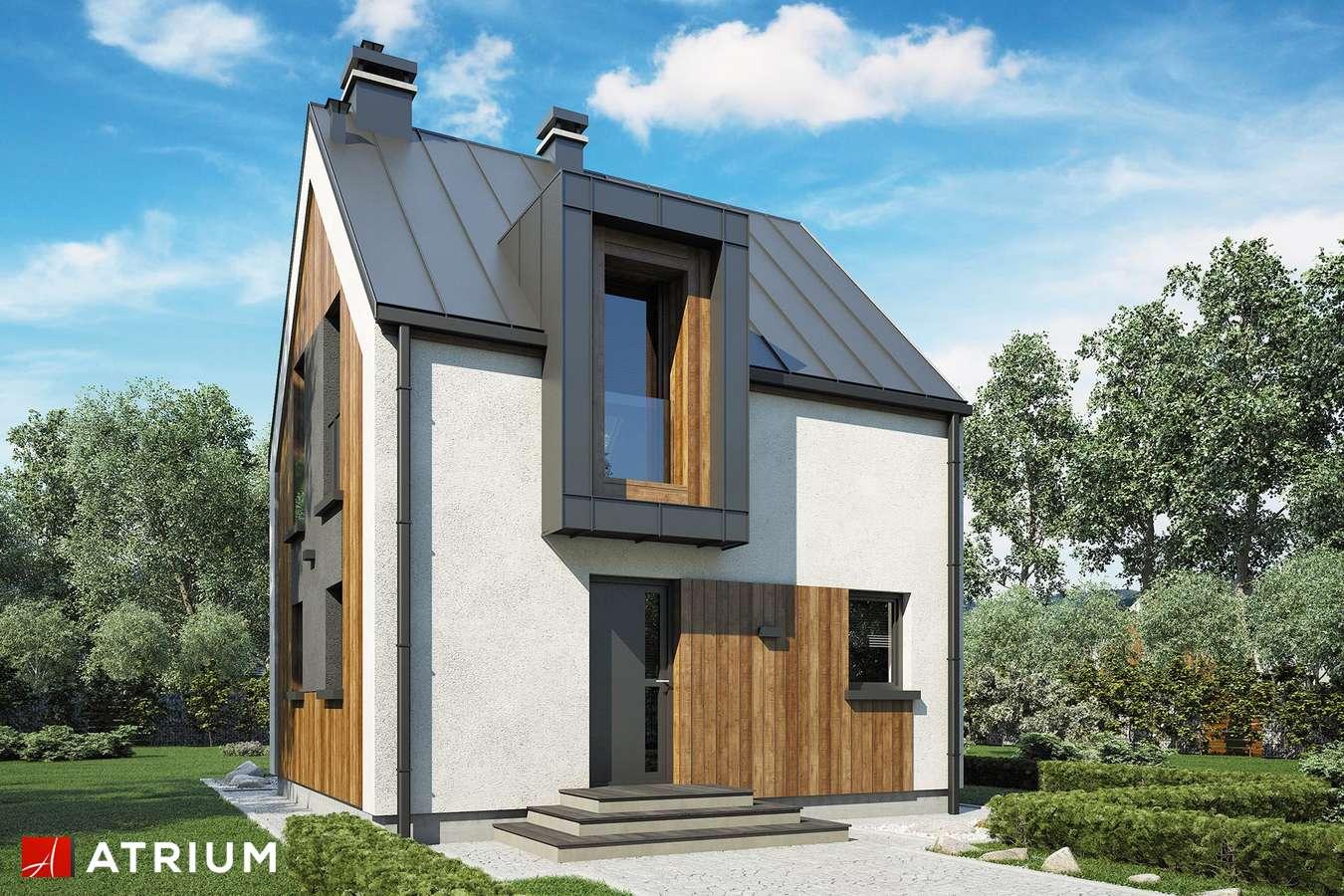 Projekty domów - Projekt domu z poddaszem PARVA - wizualizacja 1