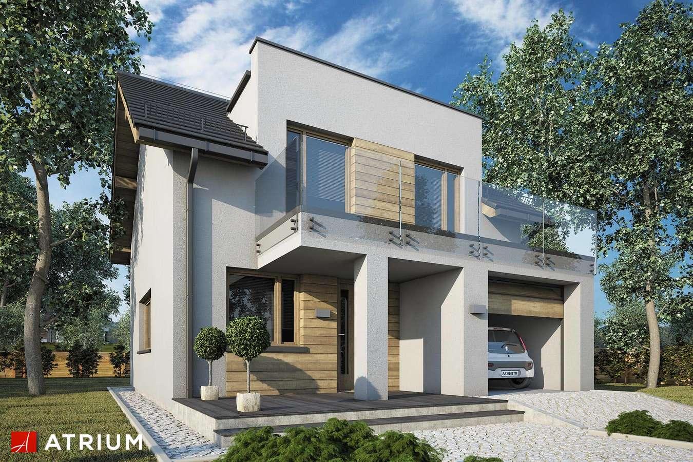 Projekty domów - Projekt domu z poddaszem SINGLE HOUSE II - wizualizacja 1
