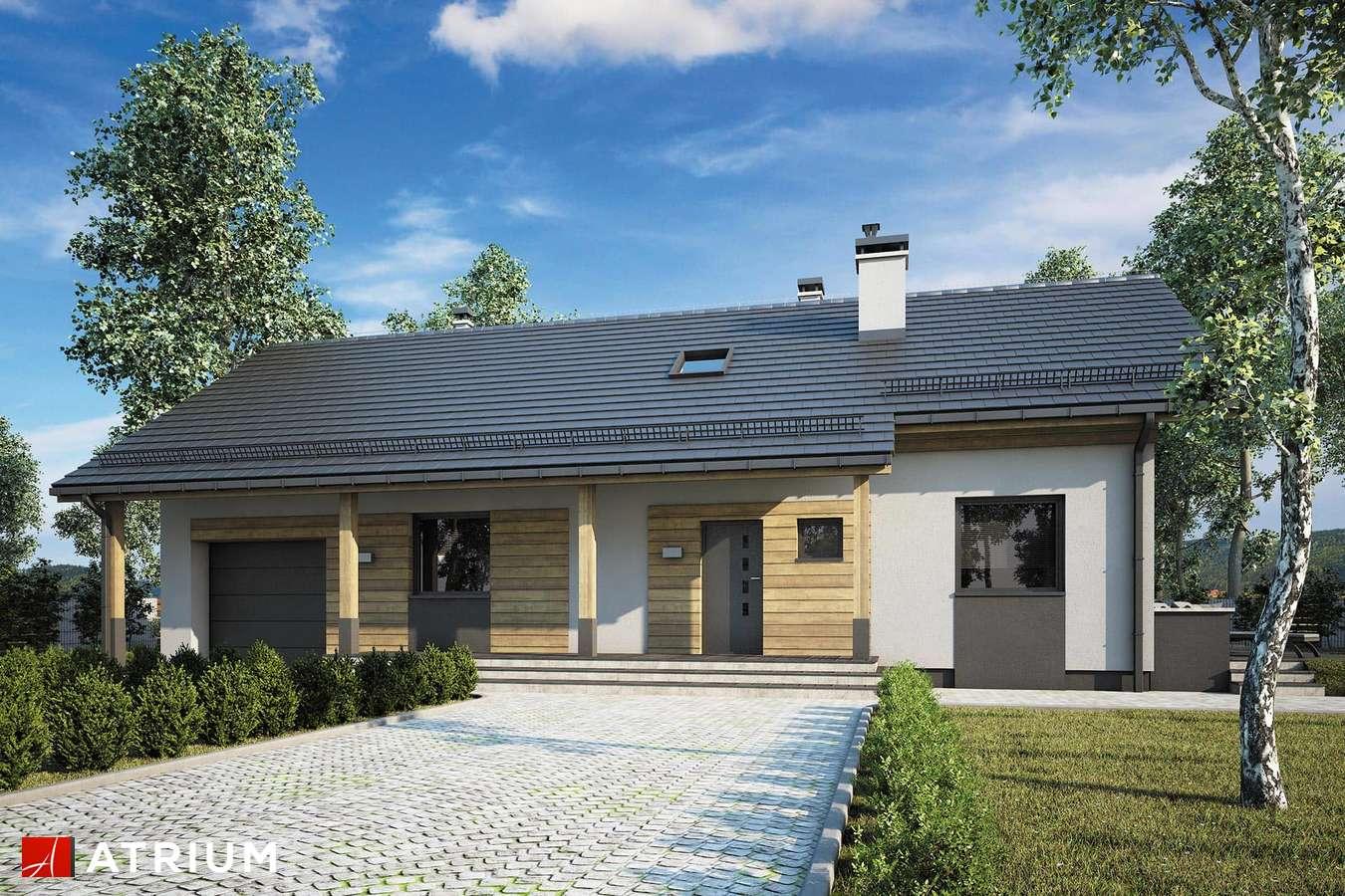 Projekty domów - Projekt domu z poddaszem WEKTOR X - wizualizacja 1