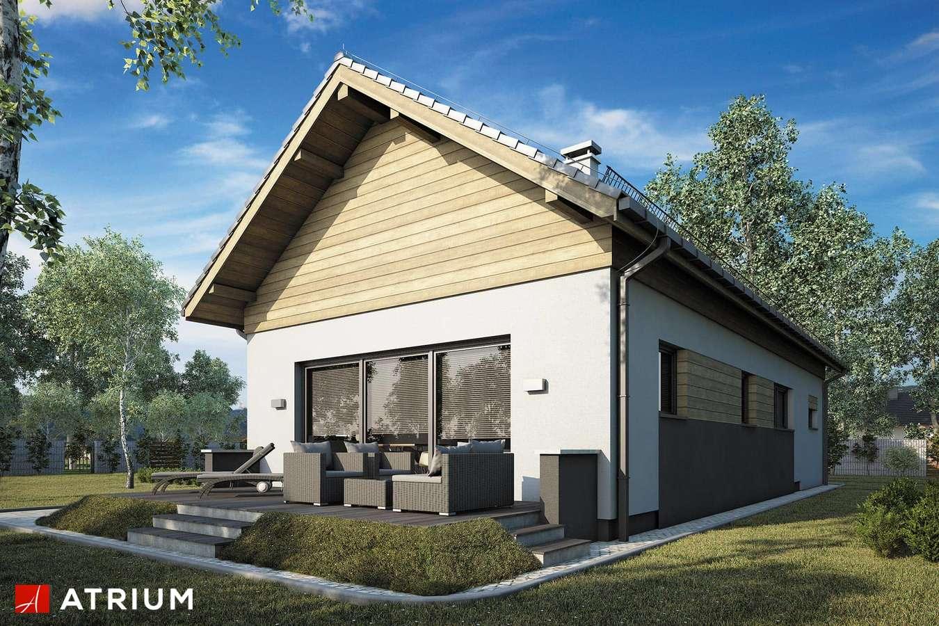 Projekty domów - Projekt domu z poddaszem WEKTOR X - wizualizacja 2